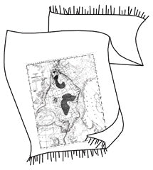 Topographical Error Pashmina