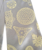 Diatoms Silk Necktie: Ivory-cream print on cream.
