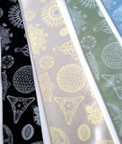Diatoms neckties. Silver on black, ivory-cream on platinum, ice ink on seafoam and sky blue.