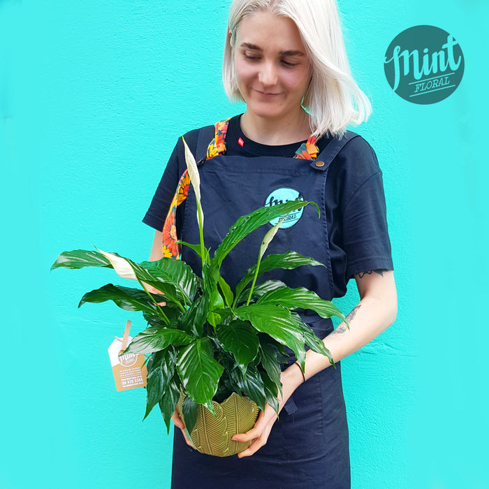Lush Peace Lily Plant in Ceramic Tropical Leaf Pot
