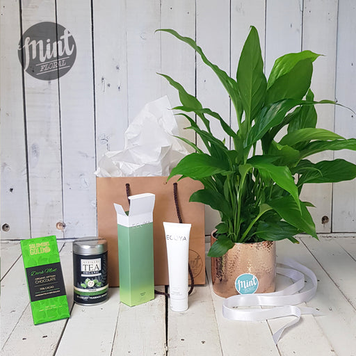 Pure and Natural Gift Bag