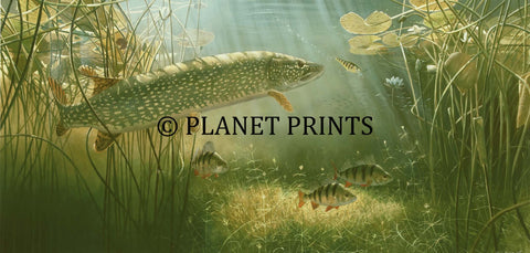 Pike and Plug by David Miller, Fishing Art