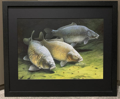 Three Cautious Carp Framed