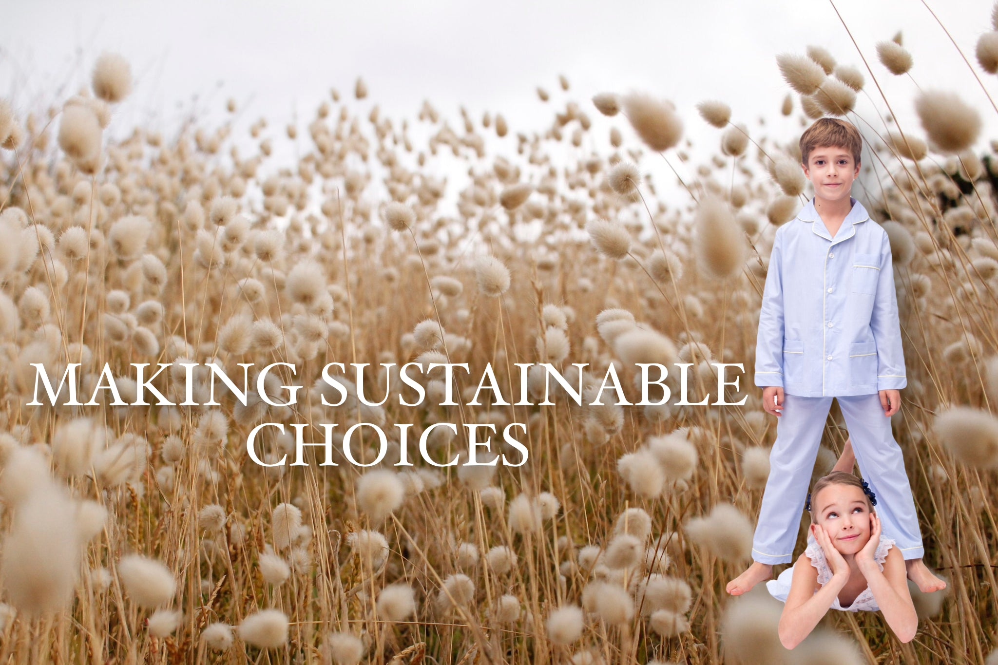 Making Sustainable Choices