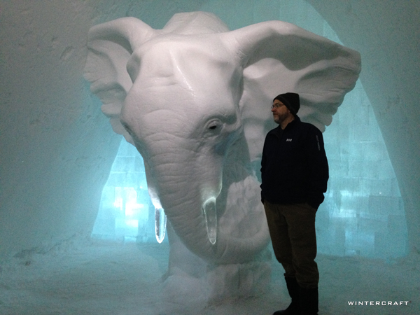 "The ""Elephant in the Room"" Room with Tom to show scale."