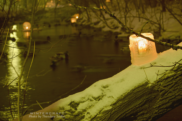 Mary Arneson's ice lantern on tree over creek 2018 Middlemoon Creekwalk photo by Theodore Sadler