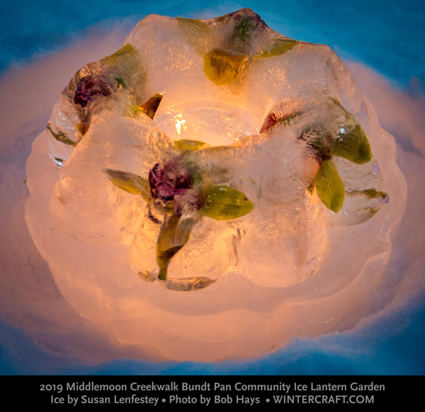 Ice by Susan Lenfestey photo by Bob Hays 2019 Middlemoon Bundt Pan Community ice garden