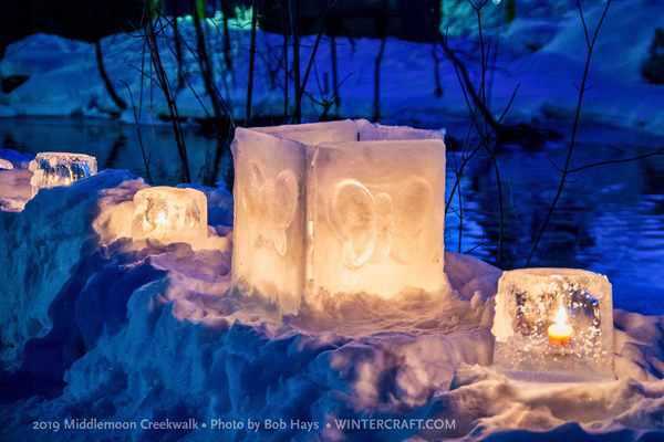 Butterfly Surround Ice Lantern by Mary Arneson 2019 Middlemoon Creekwalk Wintercraft