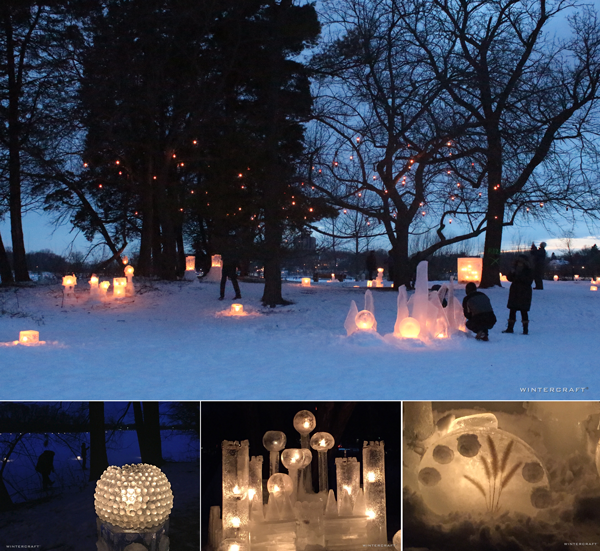 Enchanted Forest Community Ice Lantern Garden