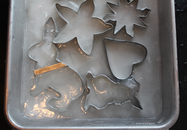 Metal Cookie Cutters in water frozen Wintercraft