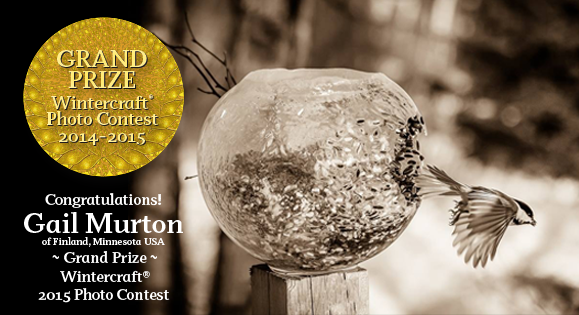 Wintercraft Photo Contest 2015 Grand Prize Winner is Gail Murton's photo of a bird leaving a Globe Ice Lantern bird feeder in the sun!
