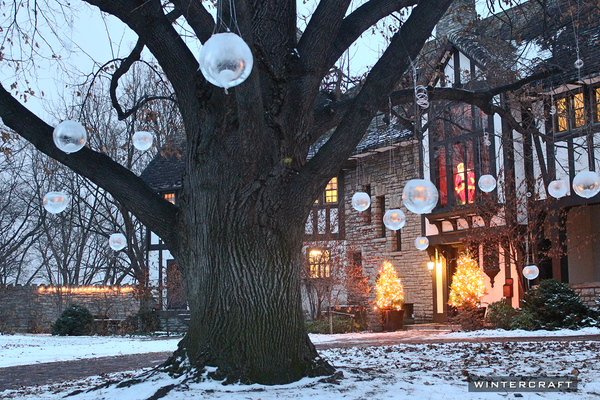 Globe Ice Lanterns Hanging in a tree by day