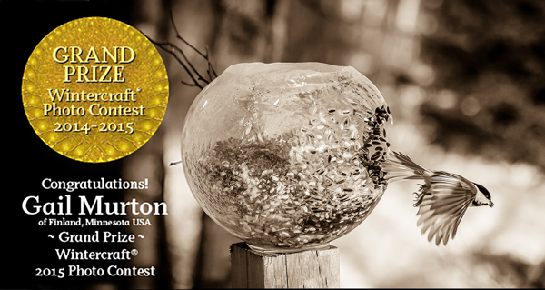 Grand Prize Winner Gail Murton Wintercraft 2015 Photo Contest