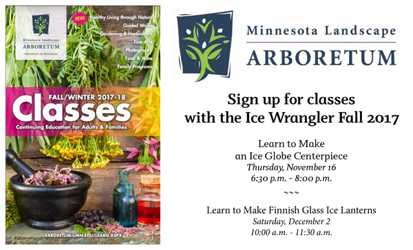 Ice Wrangler Teaching Classes at the MN Arboretum Fall 2017