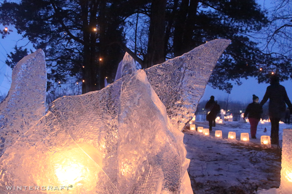 Ice Wrangler 2019 Enchanted Forest line up of ice luminaries in distance