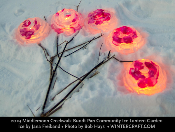 Rose Bouquet Ice Lanterns in Bundt Pan Community Ice Garden 2019 Middlemoon Creekwalk
