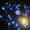 Waterproof LED Micro Lights on Wire - Wintercraft - Minneapolis, MN