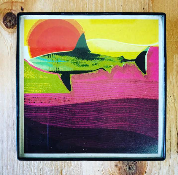"Shark Sun"" 4x4 Print Framed"