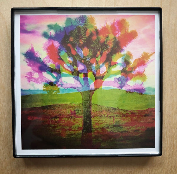 """Tree Love Color"" 4x4 Print Framed"