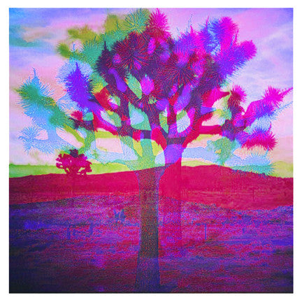 """TREE LOVE COLOR V2"" 4x4 Print"