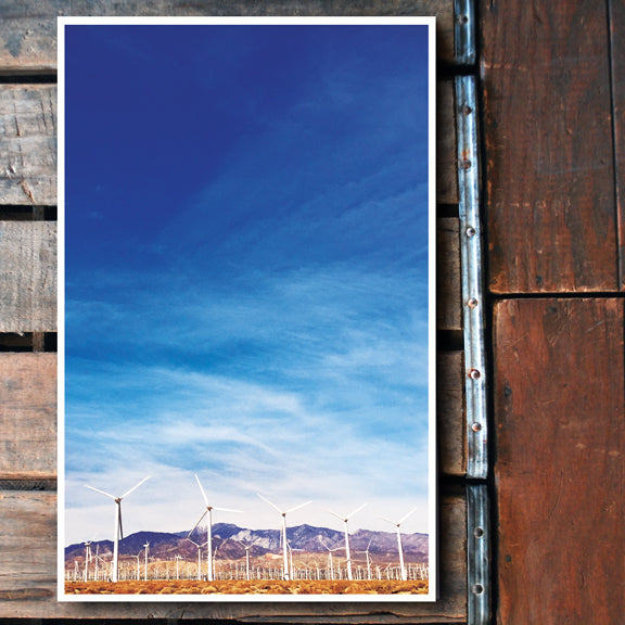 """Desert Winds"" palm springs 11x17 Poster"