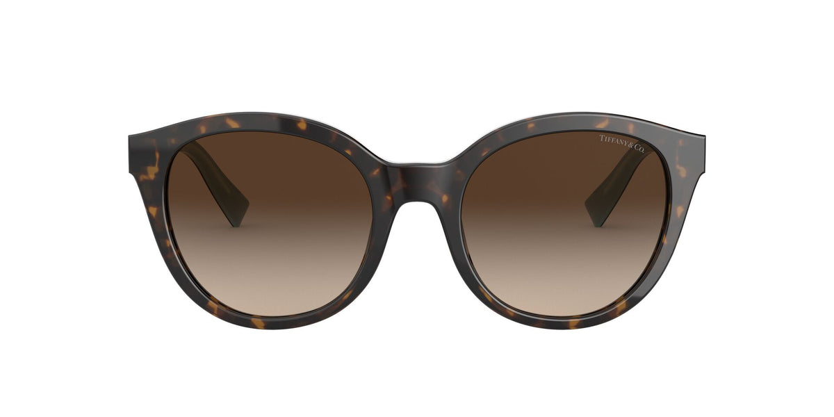 Tiffany - TF4164 Havana/Brown Gradient Butterfly Women Sunglasses - 52mm