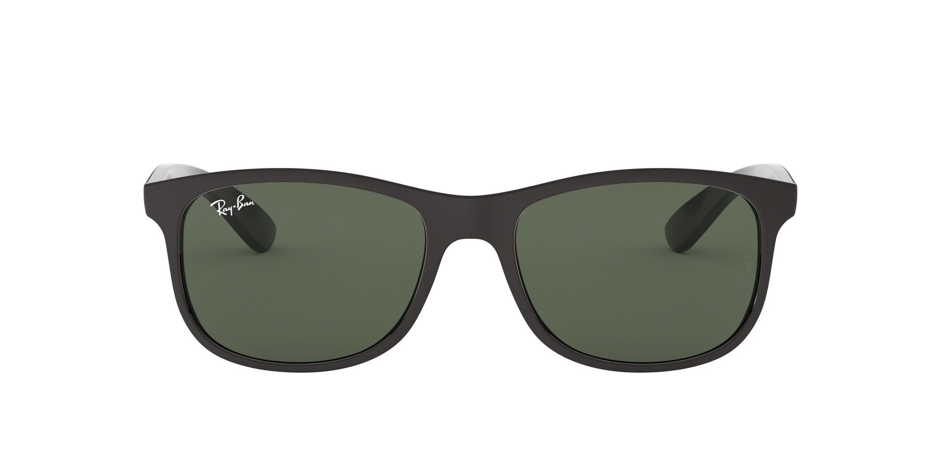 Ray Ban - RB4202 Black Oval Unisex Sunglasses - 55mm-Sunglasses-Designer Eyes