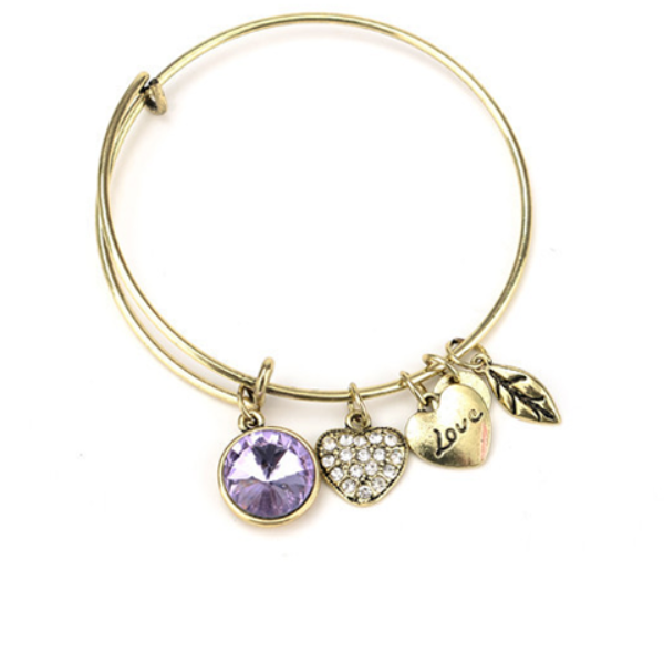 June Birthstone Charm Bangle