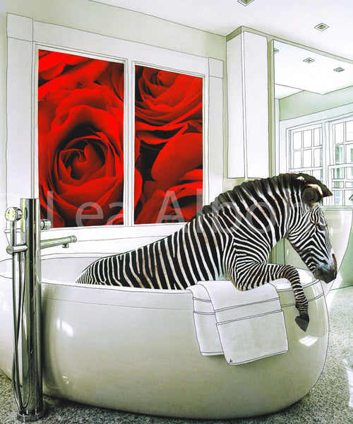 Zebra in the Tub