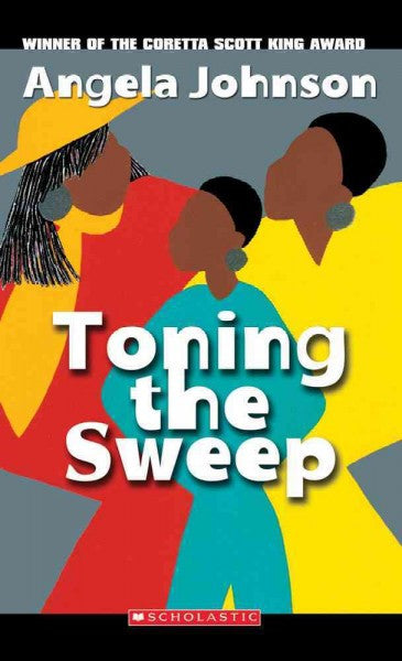 Toning the Sweep - EyeSeeMe African American Children's Bookstore