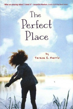 The Perfect Place - EyeSeeMe African American Children's Bookstore