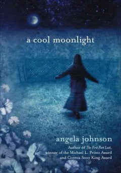 A cool moonlight - EyeSeeMe African American Children's Bookstore