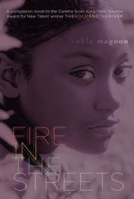 Fire in the Streets - EyeSeeMe African American Children's Bookstore