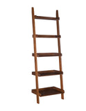 Leaning Ladder Shelf  Accessory Ladder Book shelf
