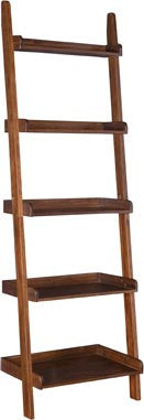 Leaning Ladder Shelf  Accessory Ladder