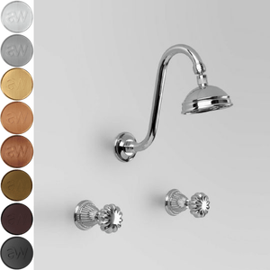 Astra Walker Swan Shower Set