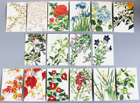 Flower Series (HanaHanga) - Post Cards Set (16 cards)