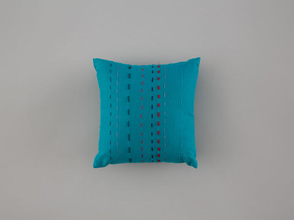 mini-cushion4-front-25x25-skinnywolf-124