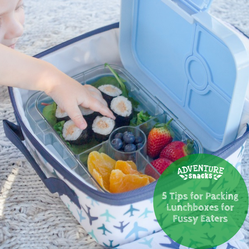 Packing a Lunchbox For a Fussy Eater