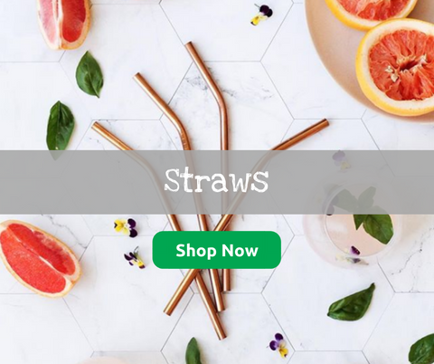 Adventure Snacks Straws