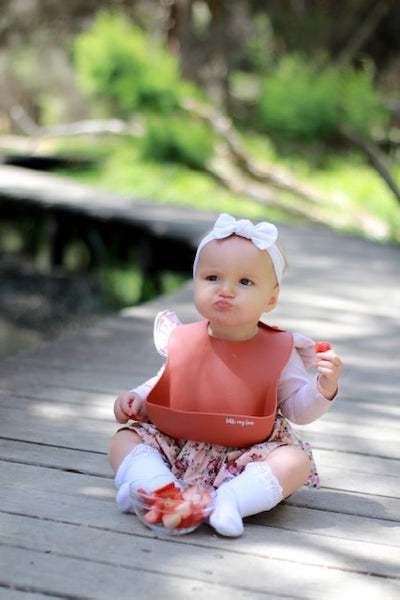 Little Ray Lane Silicone Bib - Autumn