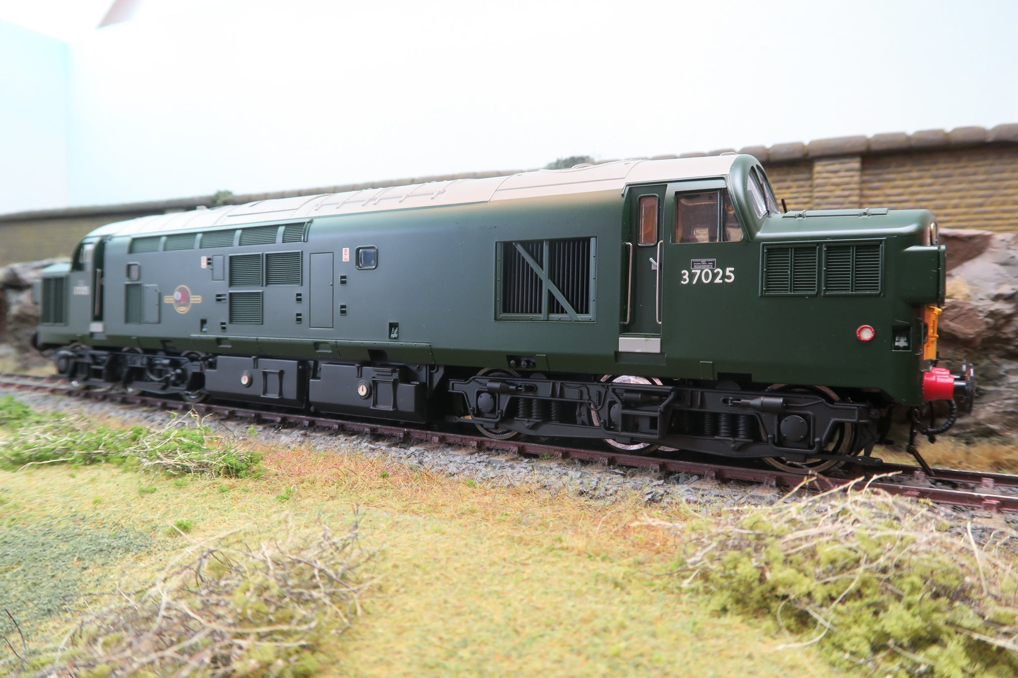 Heljan 7mm Finescale O Gauge 3700 BR Green Class 37 '37025' Cliff Williams DCC Sound!