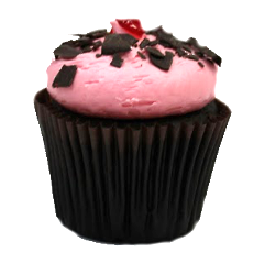 Raspberry Chocolate Truffle