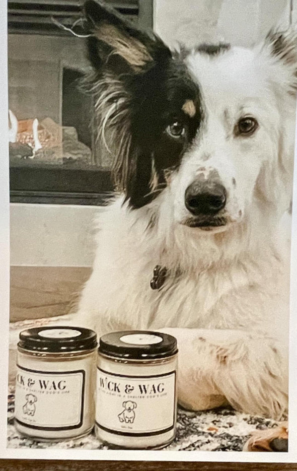 WICK & WAG Give Back Candles