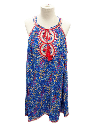 Curvy Girl Blue Multicolor Embroidered Dress