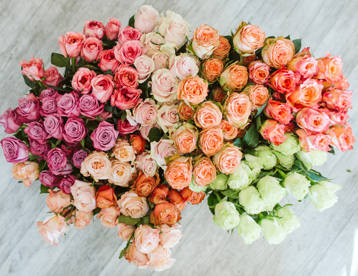 Featured Flower Friday: ROSES!