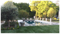 Wildflora Los Angeles Ventura Blvd Studio City California landscape design architecture architect residential home office shop garden construction yard plants Mike Michael Scholtz square pool olive tree planter