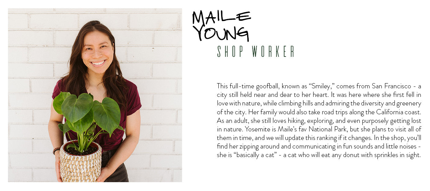 maile young shop worker wildflora