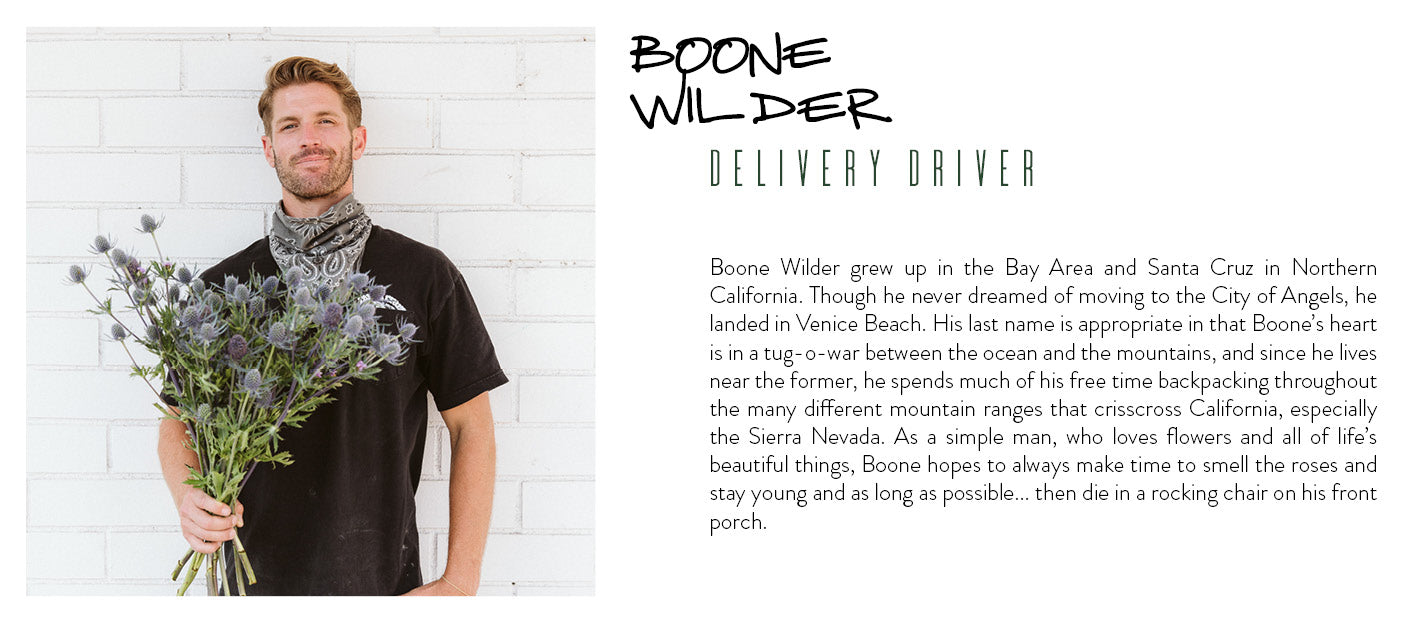boone wilder delivery driver