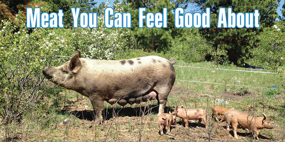 Meat You Can Feel Good About